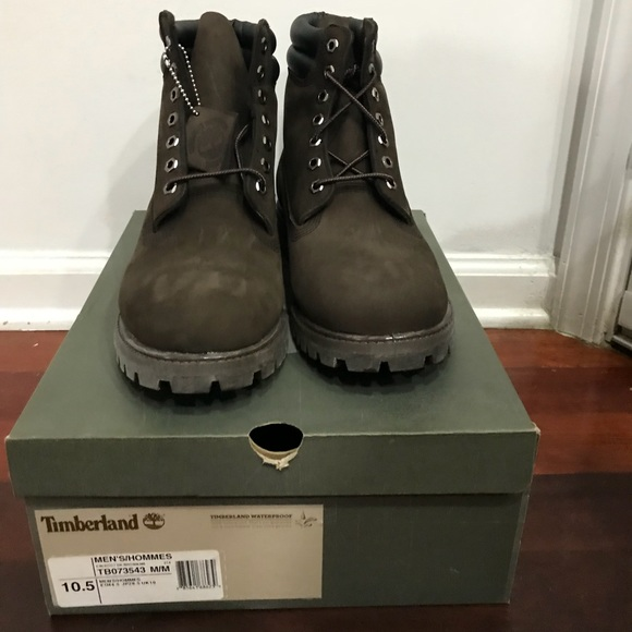 562a29d831efb Timberland Shoes | 6inch Premium Waterproof Boots | Poshmark